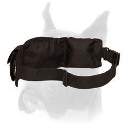 Dog Training Nylon Pouch with Adjustable Waist Strap