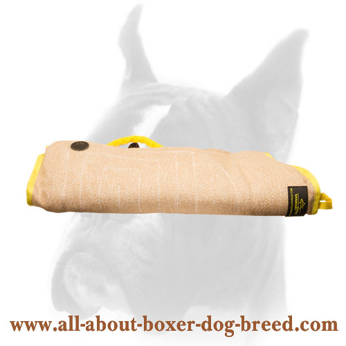 Jute Bite Builder For Boxer Puppies and Young Dogs