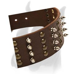 2 2/5 Inches (approx 60 mm) Wide Leather Collar for Boxer with Spikes and Studs
