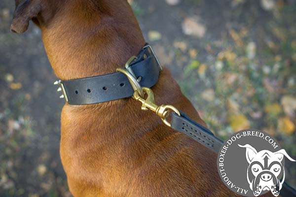 Wide Leather Boxer Collar with Steel Buckle