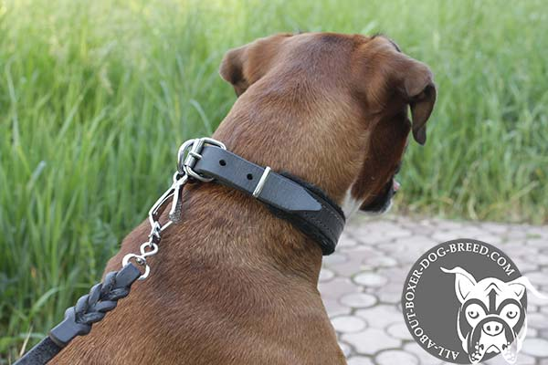 Soft Leather Boxer Collar with Strong D-Ring and Buckle