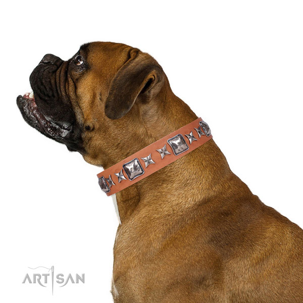 Daily use embellished dog collar of top quality material
