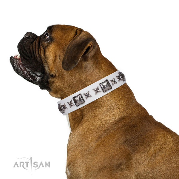 Top notch decorated leather dog collar for comfy wearing