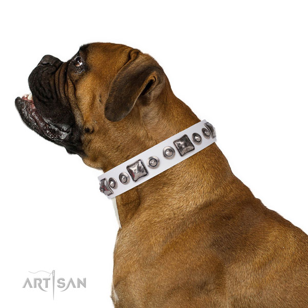 Incredible studded genuine leather dog collar for walking