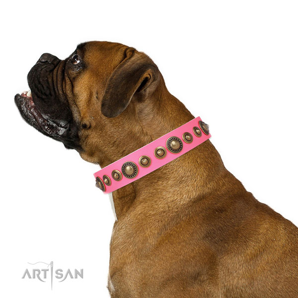 Corrosion proof buckle and D-ring on leather dog collar for everyday walking