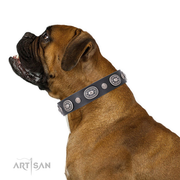 Rust-proof buckle and D-ring on natural leather dog collar for daily walking