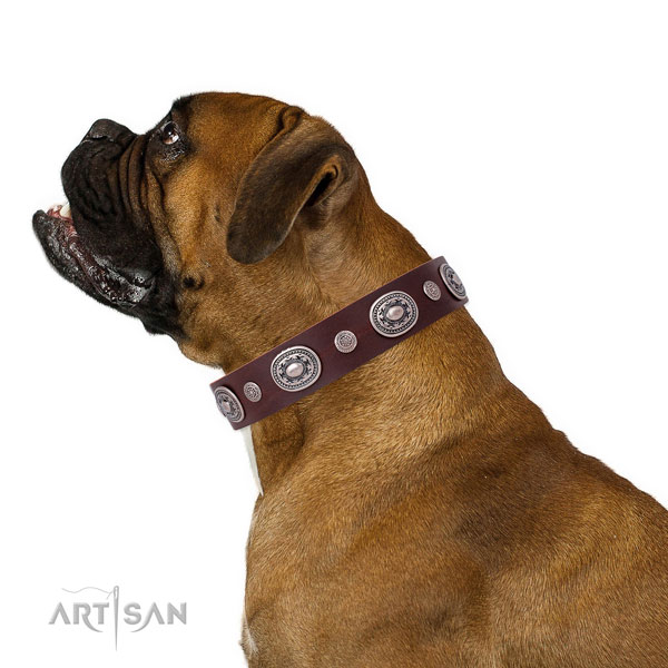Corrosion proof buckle and D-ring on leather dog collar for daily walking