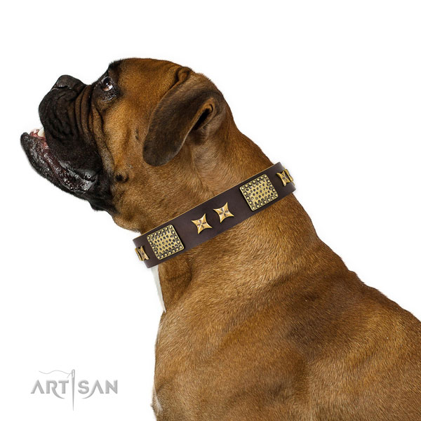 Handy use dog collar with top notch studs