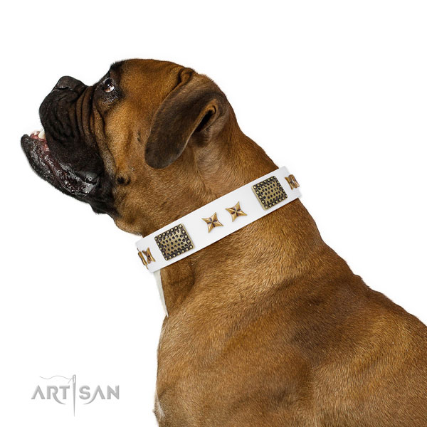 Significant decorations on walking full grain natural leather dog collar
