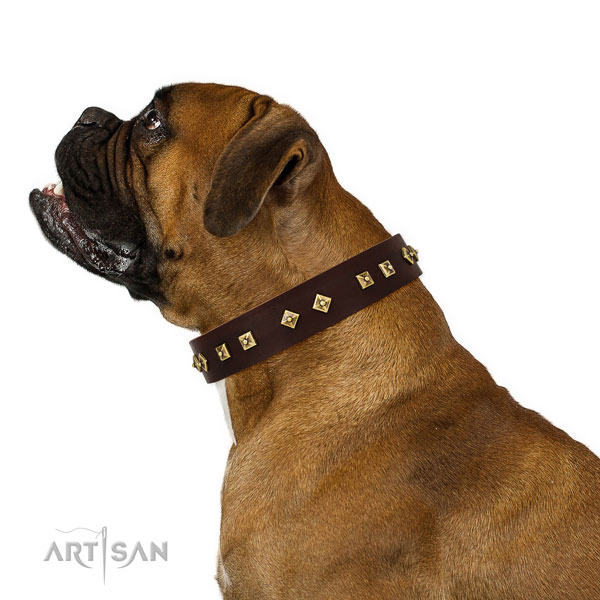 Incredible embellishments on easy wearing leather dog collar