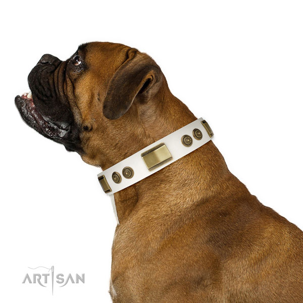 Top notch everyday use dog collar of natural leather