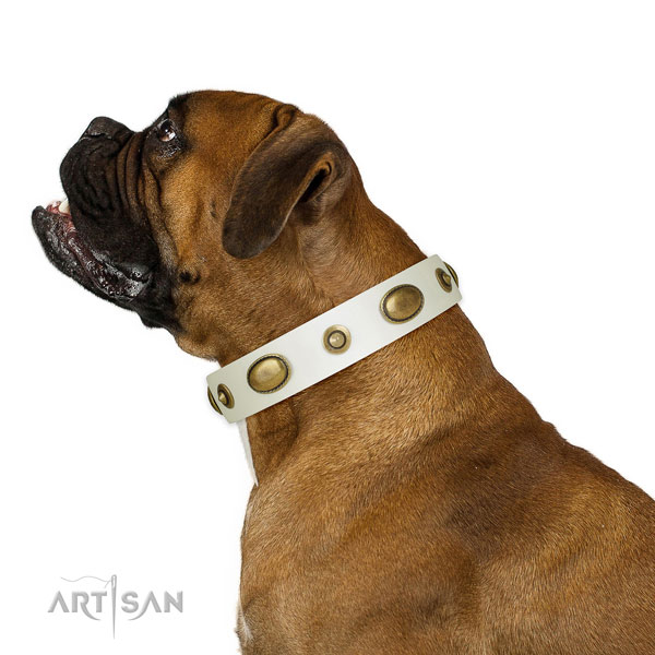 Comfortable wearing dog collar of natural leather with exceptional embellishments
