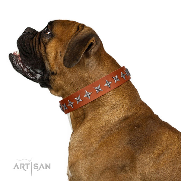 Reliable genuine leather dog collar with exceptional adornments