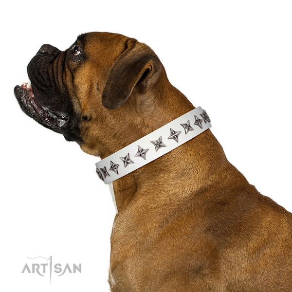 Finest quality full grain leather dog collar with stylish studs