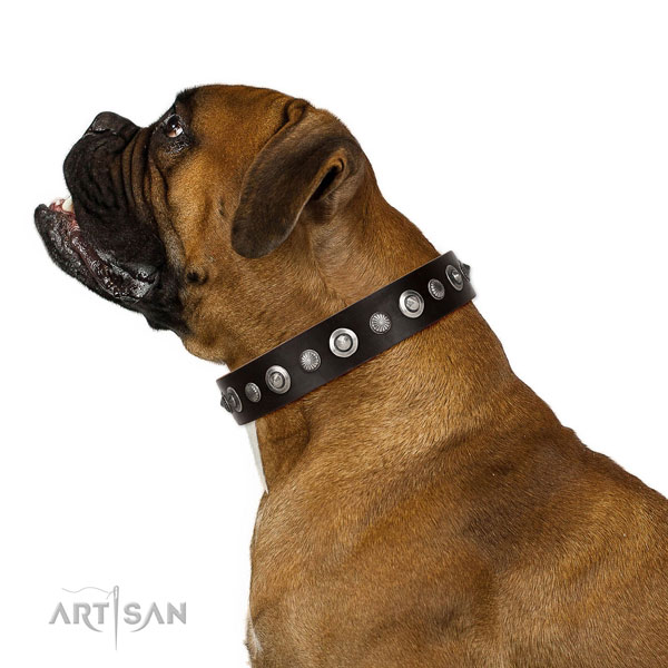 Strong natural leather dog collar with stylish embellishments