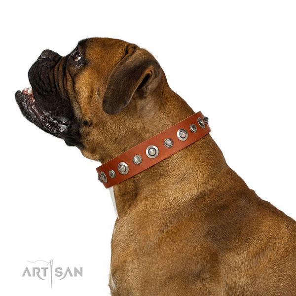 Strong full grain leather dog collar with extraordinary decorations