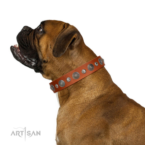 Embellished natural leather dog collar with corrosion proof fittings