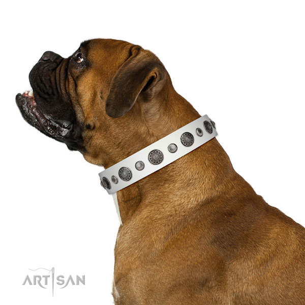 Convenient natural leather dog collar with rust resistant hardware