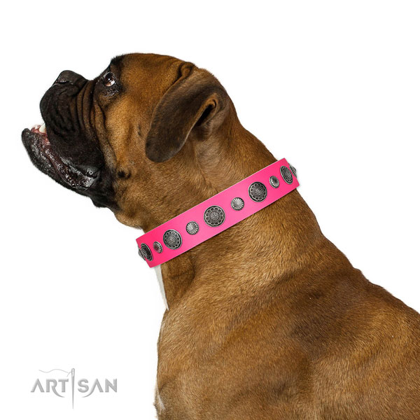 Studded natural leather dog collar with corrosion resistant D-ring