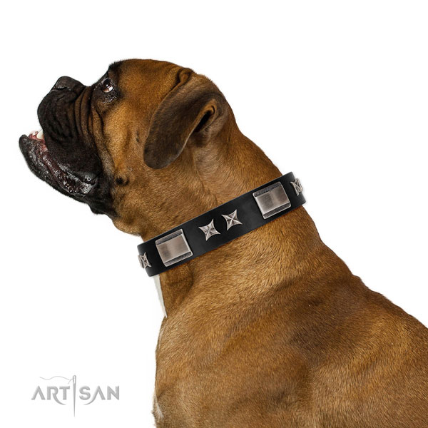 Everyday walking top notch natural leather dog collar with embellishments