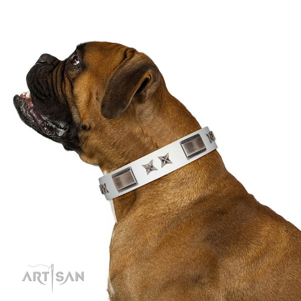 Easy wearing collar of leather for your attractive canine