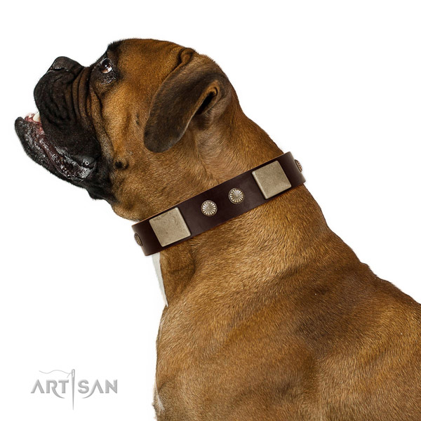 Corrosion resistant hardware on full grain leather dog collar for handy use