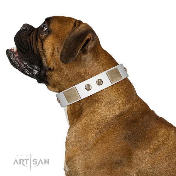 Rust resistant D-ring on genuine leather dog collar for fancy walking
