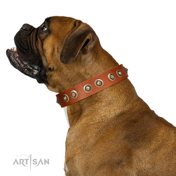 Easy wearing dog collar of genuine leather with stylish studs