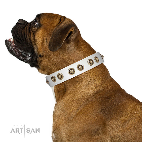 Stylish walking dog collar of natural leather with trendy adornments