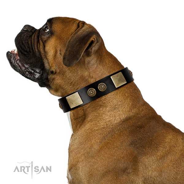 Handy use dog collar of genuine leather with top notch adornments