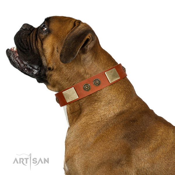 Adjustable dog collar handmade for your stylish dog