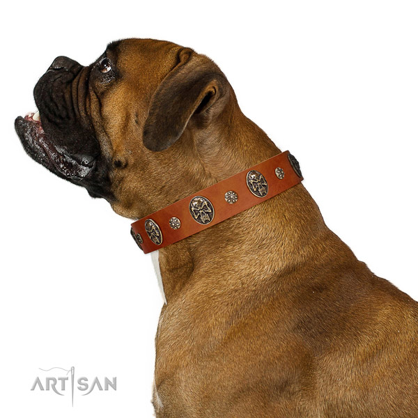 Basic training dog collar of leather with inimitable adornments