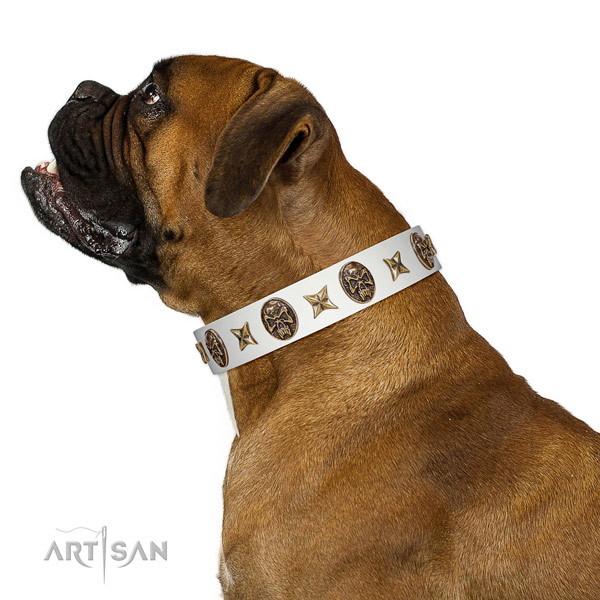 Easy to adjust dog collar created for your lovely doggie