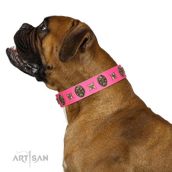 Designer dog collar created for your impressive pet