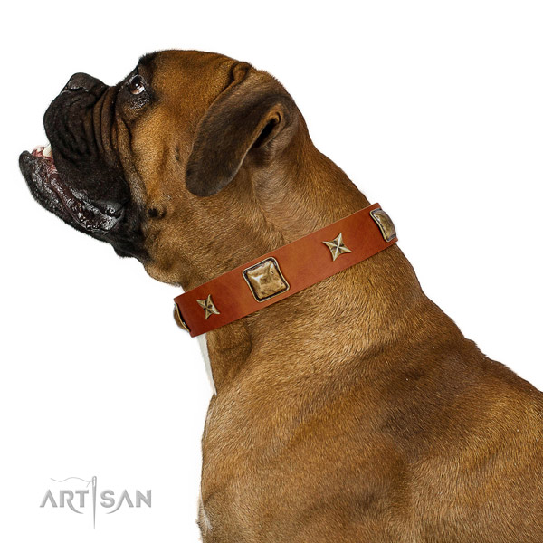 Impressive full grain genuine leather dog collar with embellishments
