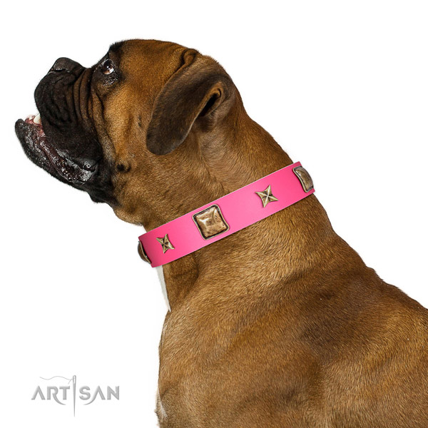 Leather dog collar of reliable material with stunning adornments