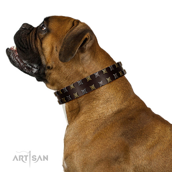 Strong full grain genuine leather dog collar with embellishments for your pet