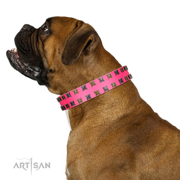 Reliable full grain natural leather dog collar with embellishments for your doggie