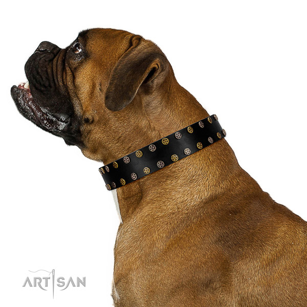 Trendy natural leather dog collar with durable embellishments