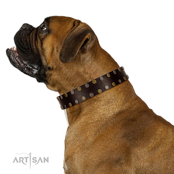 Comfortable wearing full grain genuine leather dog collar with embellishments