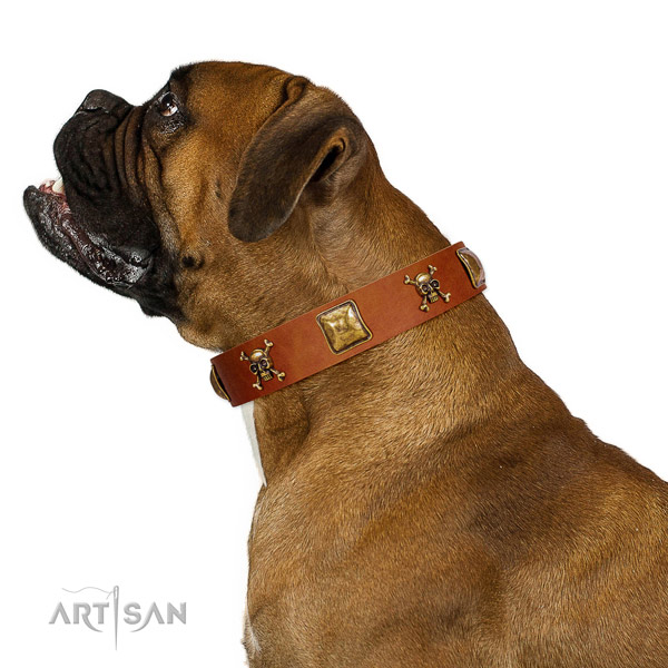 Amazing full grain genuine leather dog collar with rust resistant studs