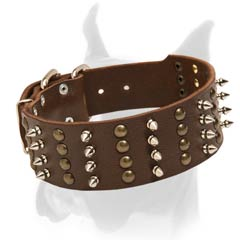 Great Width Leather Collar with Spikes and Studs Arranged in Columns