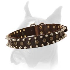 Good Quality Collar for Boxer