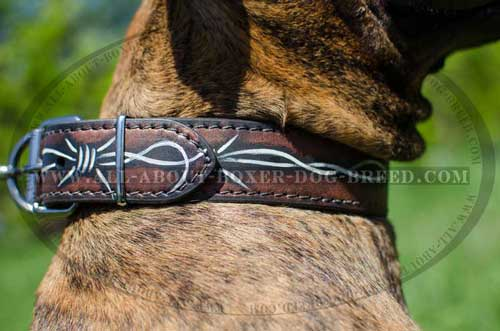 Boxer Leather Collar For Stylish Dog