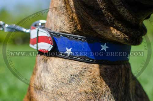 Boxer Leather Collar For Courageous Dog