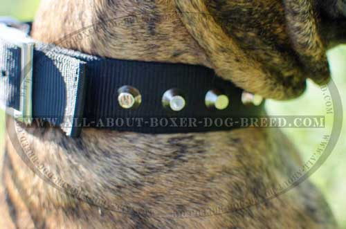 Boxer Nylon Collar Adjustable