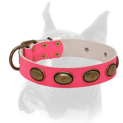 Luxury style pink collar for female Boxer