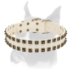Elegant nickel studs for white leather collar for Boxer