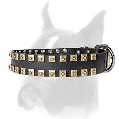 Studded leather collar for Boxer