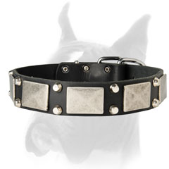 Warlike Style Collar with Plates and Studs